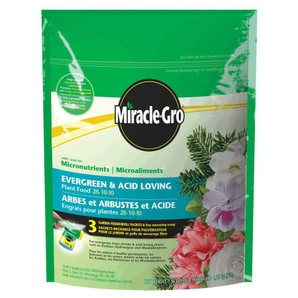Best Soil and Fertilizer for Cacti and Succulents ...